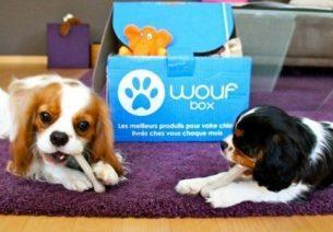 Woufbox et Miaoubox débarquent sur Groupon