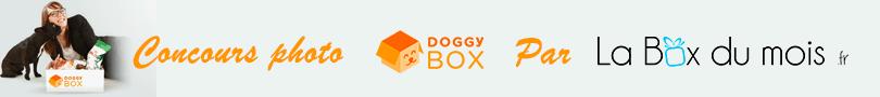 Remportez une DoggyBox avec La Box du mois