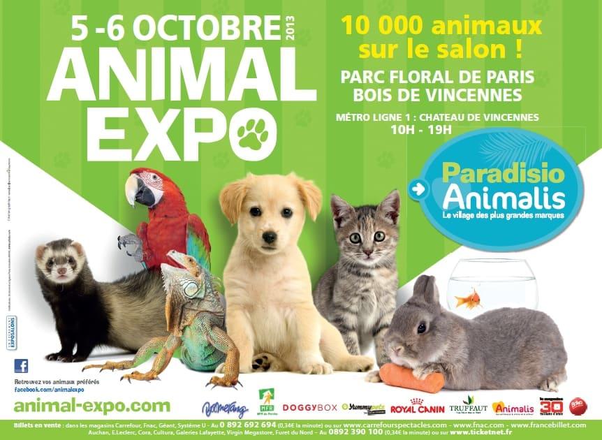 Doggybox et Kittybox seront sur le salon Animal Expo