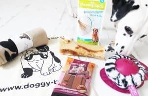 DoggyBox - Novembre 2014