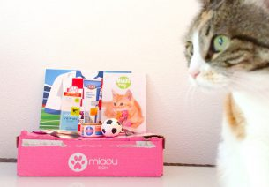 Miaoubox - juin 2014