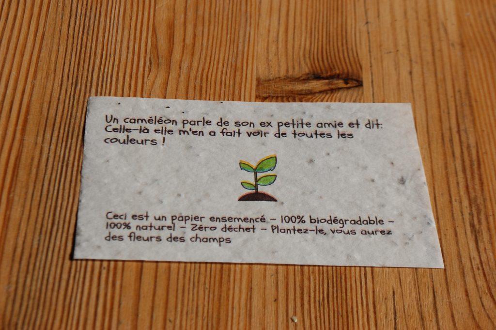 Green Eco Box de février 2020