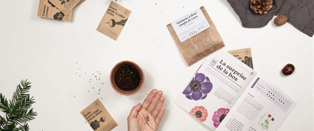 Box fleurs et jardinage